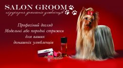 Salon Groom